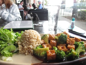 Tofu and Broccoli from Del Mar Rendezvous